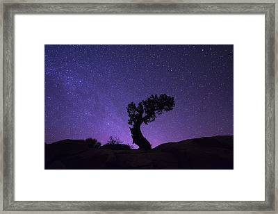 The Dreaming Tree Framed Print by Dustin  LeFevre