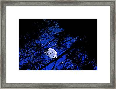 Framed Print featuring the photograph Starry Starry Night by Mike Flynn