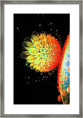 Stars 2 Framed Print by Nico Bielow