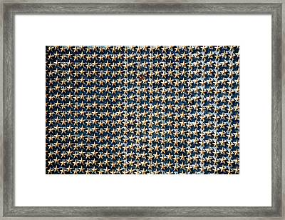 Stars Framed Print by Greg Fortier