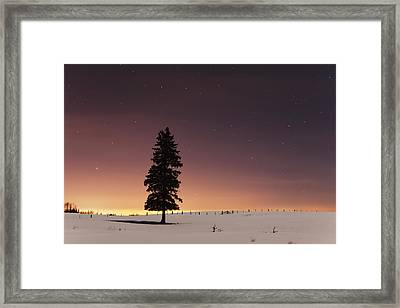 Stars In The Night Sky With Lone Tree Framed Print by Susan Dykstra