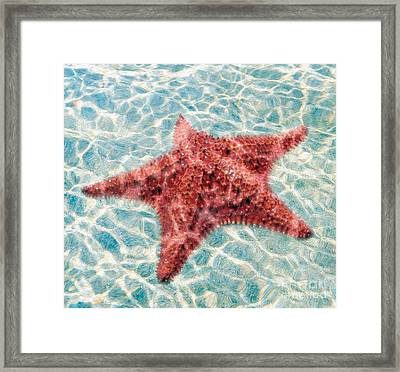 Stars In The Water Framed Print