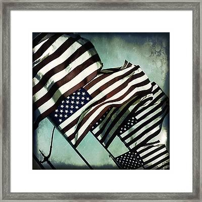Stars N  Stripes Framed Print by Trish Mistric