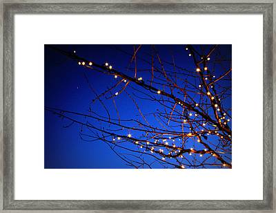 Framed Print featuring the photograph Stars On Branches by Aurelio Zucco