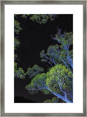 Stars Out Tonight Framed Print by Nancy Marie Ricketts