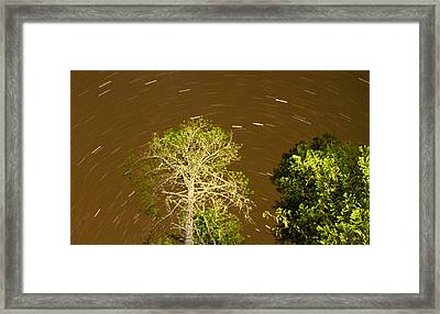 Stars Over Trees Framed Print by Kunal Mehra