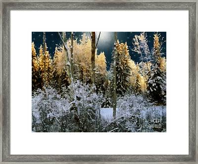 Starshine On A Snowy Wood Framed Print