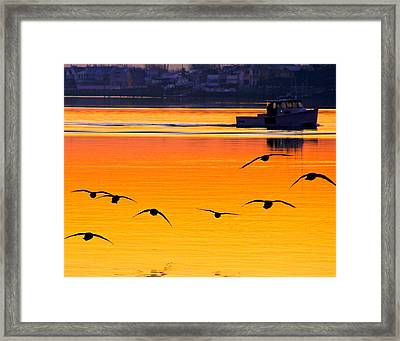 Start Of A Day Framed Print