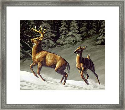 Startled - Variation Framed Print
