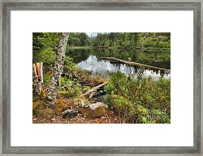 Starvation Lake Reflections Framed Print