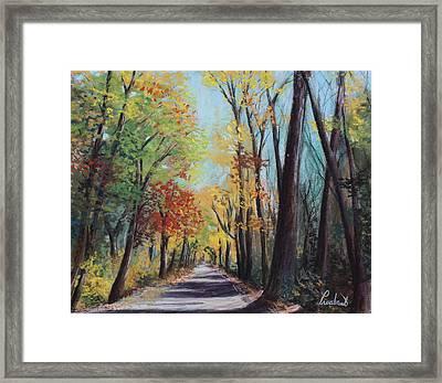 Starved Rock Park - Autumn Colors Framed Print by Prashant Shah