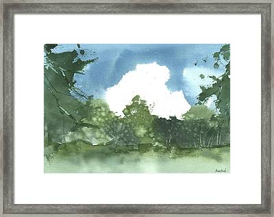 State Park Plein Air 7-20-13 Framed Print by Sean Seal