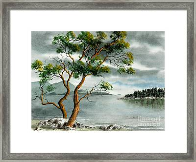 Stately Arbutus Framed Print by Frank Townsley