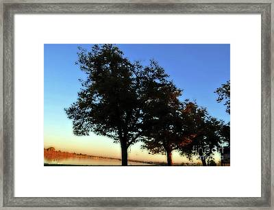 Stately Silhouette Framed Print by Molly McPherson