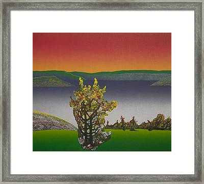 Static  View. Framed Print by Jarle Rosseland
