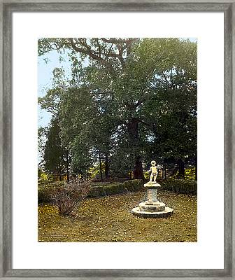 Statue And Tree Framed Print