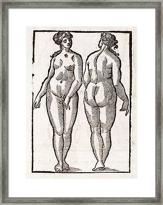 Statue By Praxiteles Framed Print