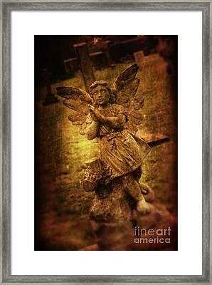 Statue Of Angel Framed Print by Amanda Elwell