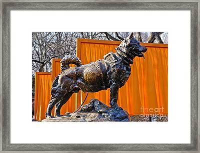Statue Of Balto In Nyc Central Park Framed Print by Anthony Sacco