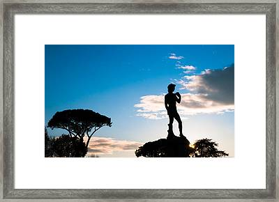 Framed Print featuring the photograph Statue Of David by Avian Resources