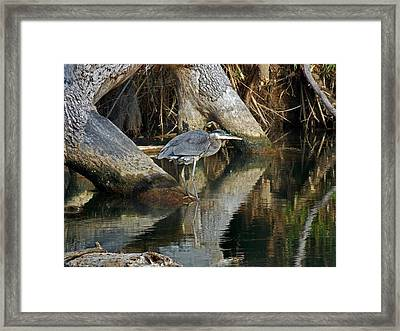 Statues Framed Print by Skip Willits