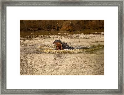 Stay Away From My Waters Hippo Framed Print by Eti Reid
