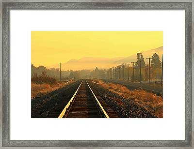Framed Print featuring the photograph Stay On Track by Lynn Hopwood