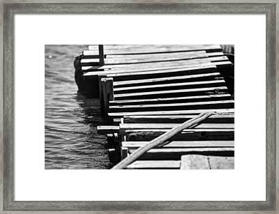 Stay Framed Print by Taylan Apukovska
