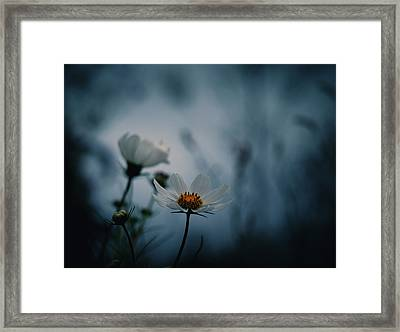 Framed Print featuring the photograph Stay With Me A While by Rachel Mirror