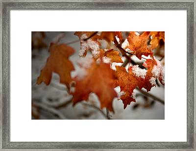 Staying Late Framed Print
