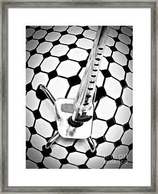 Staying On My Feet Framed Print by Sarah Loft