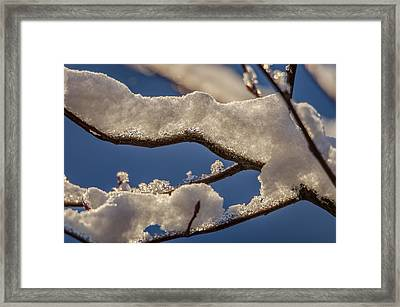 Framed Print featuring the photograph Staying Warm by Steven Santamour