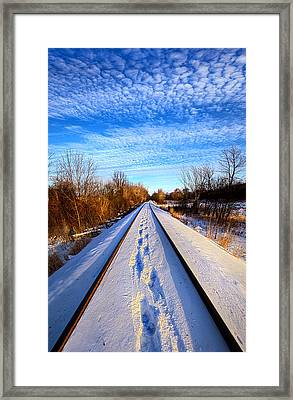 Staying Within The Lines Framed Print by Phil Koch