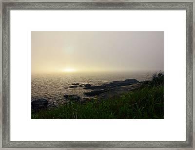 Steady Light Framed Print by Lourry Legarde
