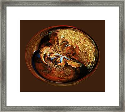 Steamed Crab Orb Framed Print by Paulette Thomas
