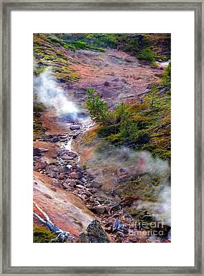 Steaming Framed Print by Kathleen Struckle