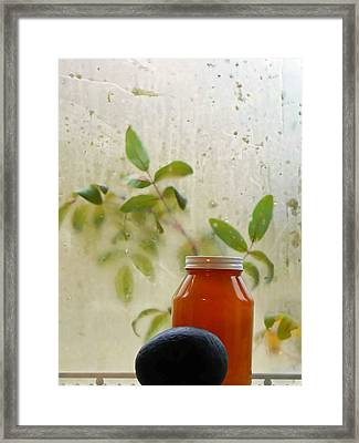 Steamy Window Framed Print by Pamela Patch