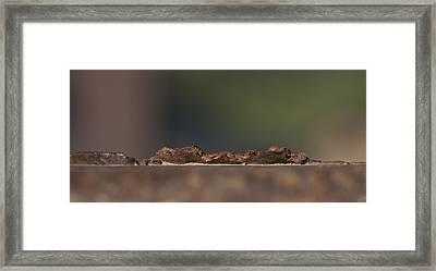 Steel Landscape Framed Print