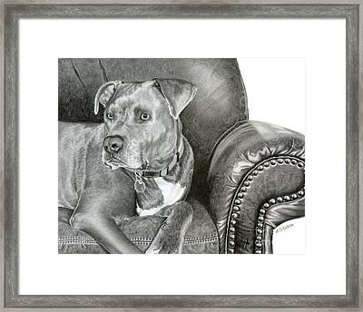 Leather And Steel Framed Print by Sarah Batalka