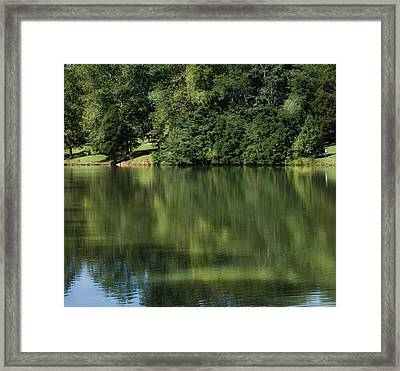 Steele Creek Park Reflections Framed Print