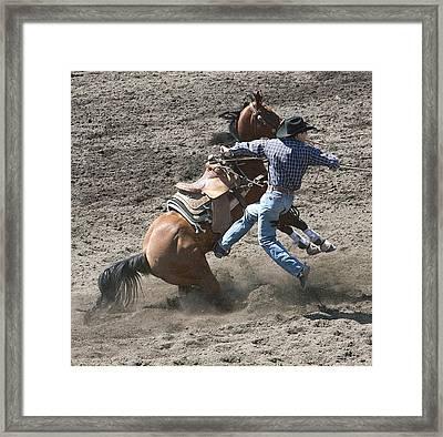 Steer Roping Horse Framed Print by Daniel Hagerman