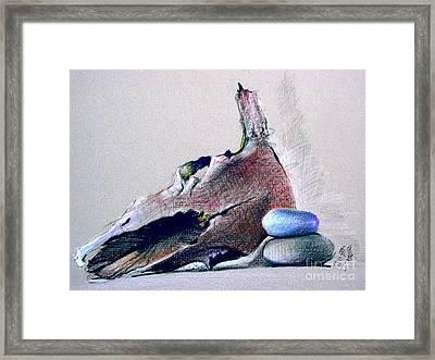 Steer Skull And Rocks Framed Print