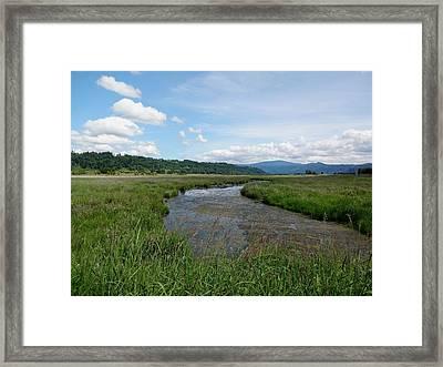 Steigerwald Lake View Framed Print by Lizbeth Bostrom