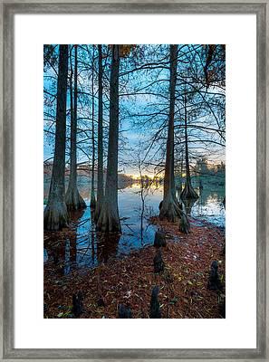 Steinhagen Reservoir Vertical Framed Print