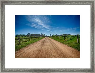 Stella Bella Winery Framed Print