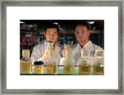 Stem Cell Production From Urine Framed Print