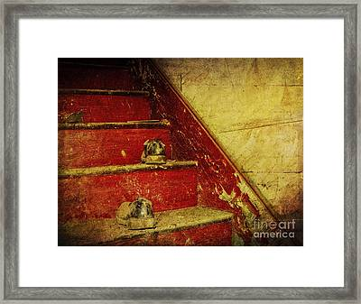 Framed Print featuring the photograph Step Back In Time by Debra Fedchin