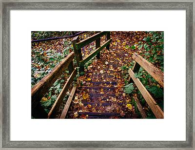 Step Down Framed Print by Pati Photography