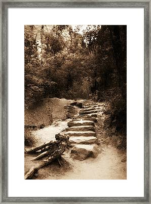 Step Into Nature Framed Print by Aron Kearney