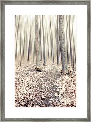 Steppin' Through The Last Days Of Autumn Framed Print by Hannes Cmarits